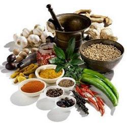 питание для питта доши похудение
