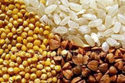 Зерновая диета для похудения